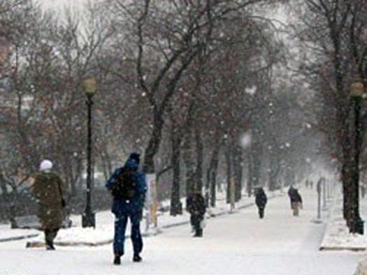 Сегодня снегопад