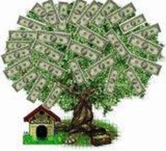 dinheiro-em-arvore