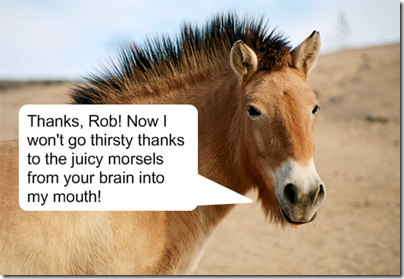 I'm proud to introduce Thankful Horse. Every good blog needs an animal sidekick.