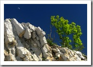 Májusi félhold (Bélkő, 2008)