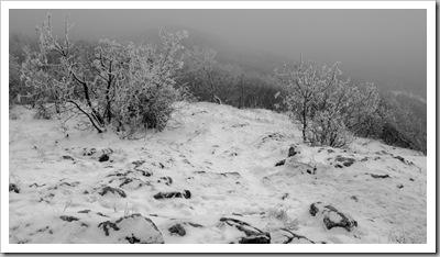 Csipkés lejtő - Újlaki-hegy, 2010. december 30.