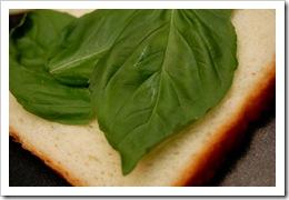 italiangrilledcheese2
