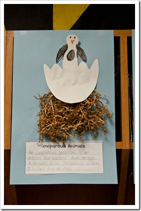 Image of: Engaged Had The Kids Write The Definition Of An Oviparous Animal in Their Own Words And Then Write Sentence About An Animal That Is Oviparous They Loved It The First Grade Parade Oviparous Animals Earth Day Diphthong The First Grade Parade