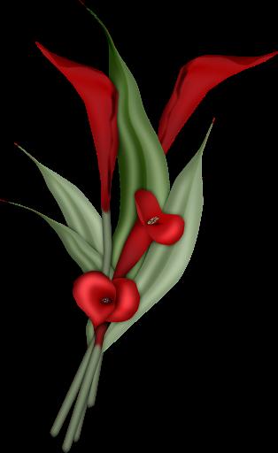 http://lh4.ggpht.com/_WQTTHSxe53Q/Sl3sP8SbfQI/AAAAAAAAAq0/jIc9_AMR33Q/flower%20%2842%29.png