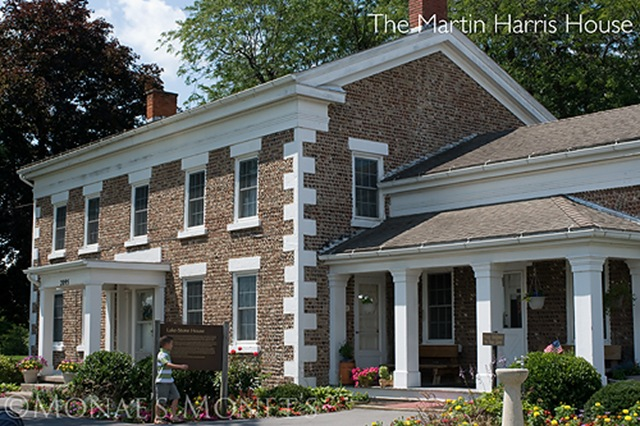 Martin Harris house blog