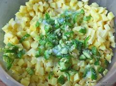 Add lemon juice and green chilli, salt