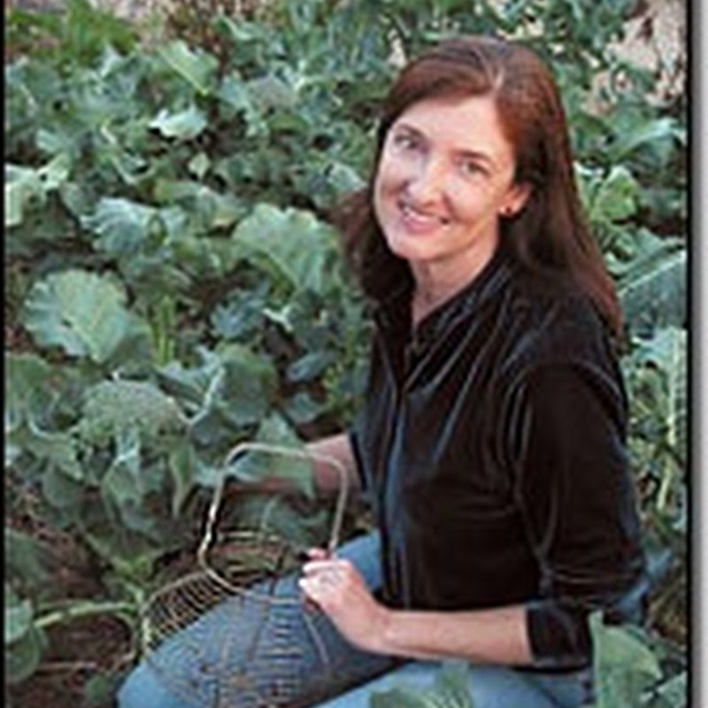 """barbara kingsolver writing style """"the office of barbara kingsolver"""" is where my assistant judy carmichael makes writing possible for me by handling all things that come at us by mail, ups, telephone, email, or wild elephant it's across the driveway from our house, in a remodeled carriage house."""