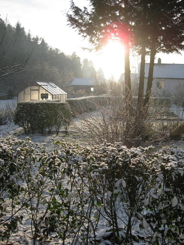 2008-12-31 Hagen på Møll (7)