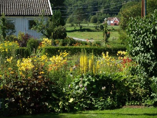 2008-08-08 August i hagen (2)