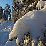 Länk till album 'Vinter'