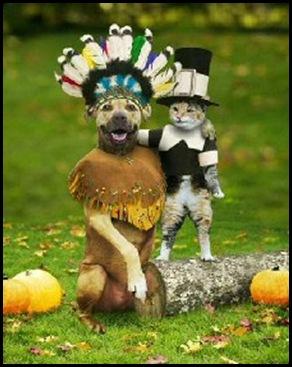 thanksgiving_dog_cat