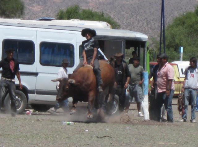 LEJARRETA EN LOS ANDES (2009) 23%2Cdoma