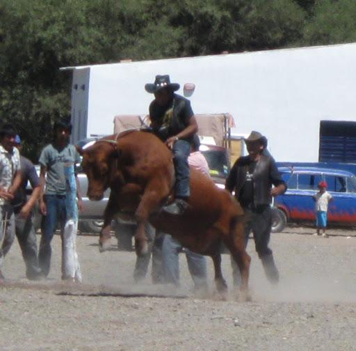 LEJARRETA EN LOS ANDES (2009) 25%2Cdoma