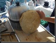 brood 3
