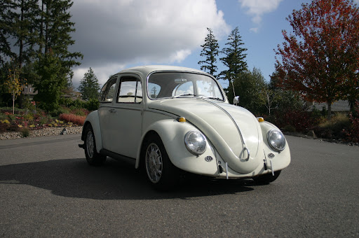 Franklins VW Werks Online :: View topic - 1966 Cal Look Project
