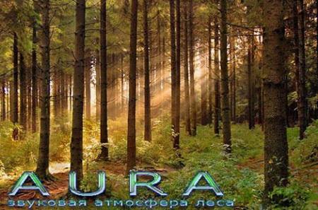 Aura v.2.6.11.126 ot 22.12.2009 (2009) PC
