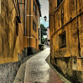 by Leonard Stleonard - City,  Street & Park  Vistas