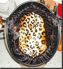helmets oct2010 014