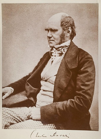 429px-Charles_Darwin_seated