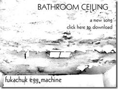 bathroomceiling2