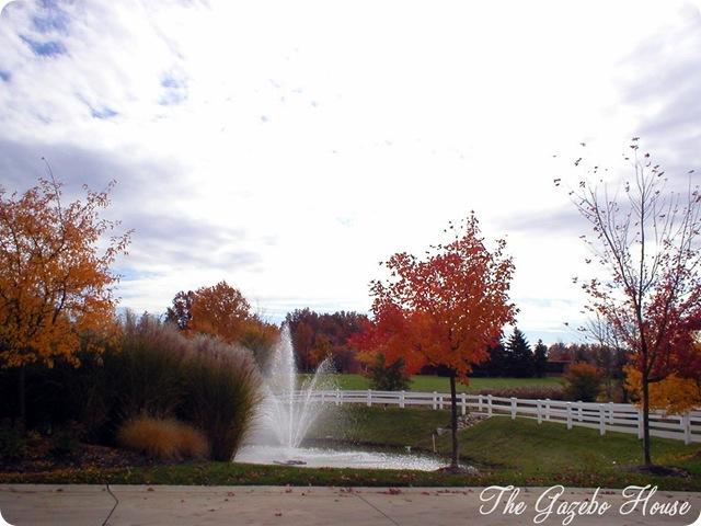 Autumn in the development