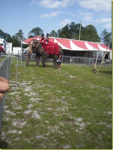 MAY DAYZ...circus 036