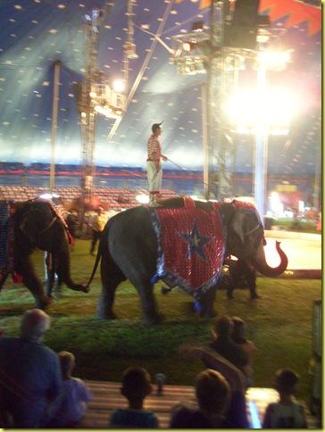MAY DAYZ...circus 081