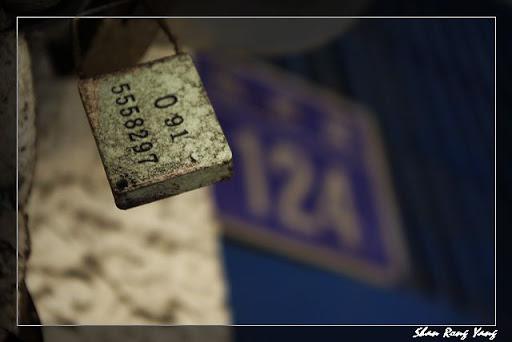 2010/03/06_艋舺人文寫意_新手上路