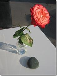 Rose ds vase