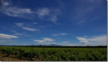 Ventoux dentelles vus des vignes