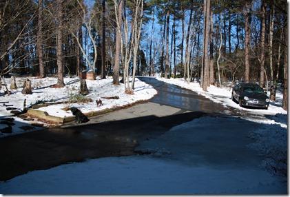 Snow Jan 2010 032