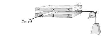 Primitive linear d.c. motor
