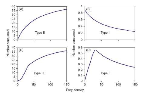 Number of prey consumed per predator and the corresponding proportion consumed for type II (A, B) and type III (C, D) functional responses.