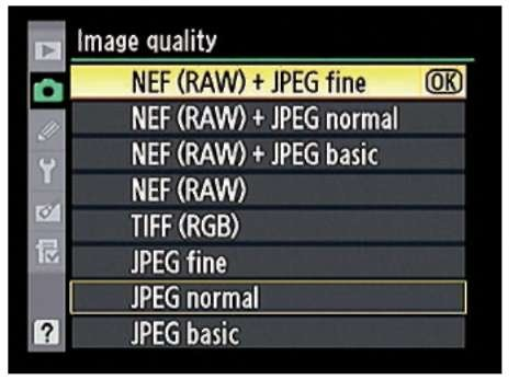 You can create two files for each picture, one in the RAW format and a second in the JPEG format.