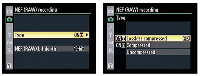 You can choose to apply one of two types of compression or leave RAW files uncompressed.