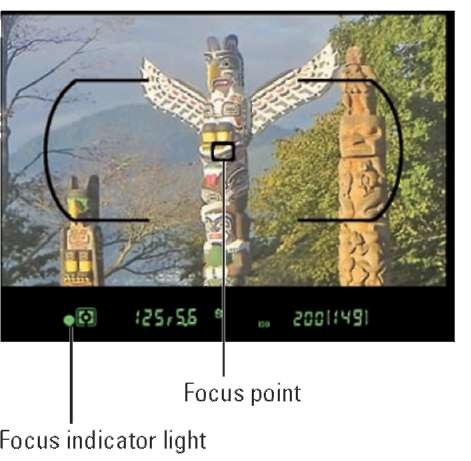 In all three Focus modes, the focus indicator light appears when focus is achieved.