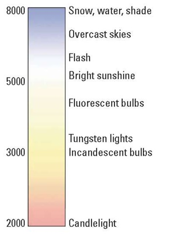 Each light source emits a specific color.