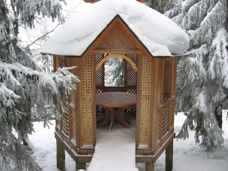 Arbor in the mountains