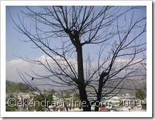 pokhara scenario: click to zoom, new window