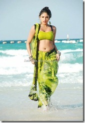 Haripriya Tamil Actress Hot Photos (3)