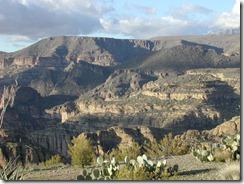 Arizona_2008 019