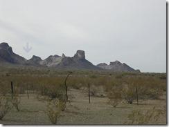 Arizona_2010 008a