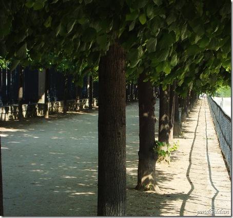Jardin Des Tuilleries