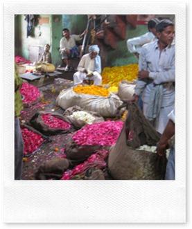 Delhi - 10 - Flower warehouse