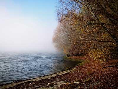 clutha-mist-3.jpg