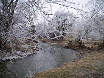 hoar-frost-1.jpg