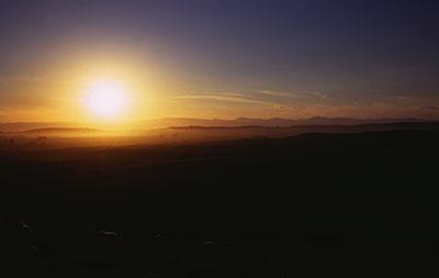 sunset-sheep-north-otago.jpg