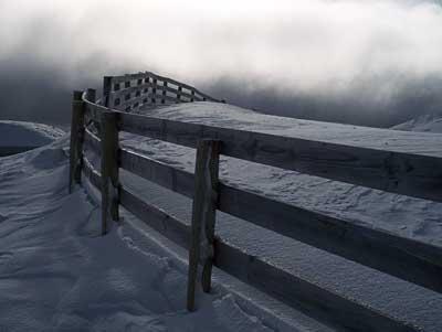 snow-farm-fence.jpg