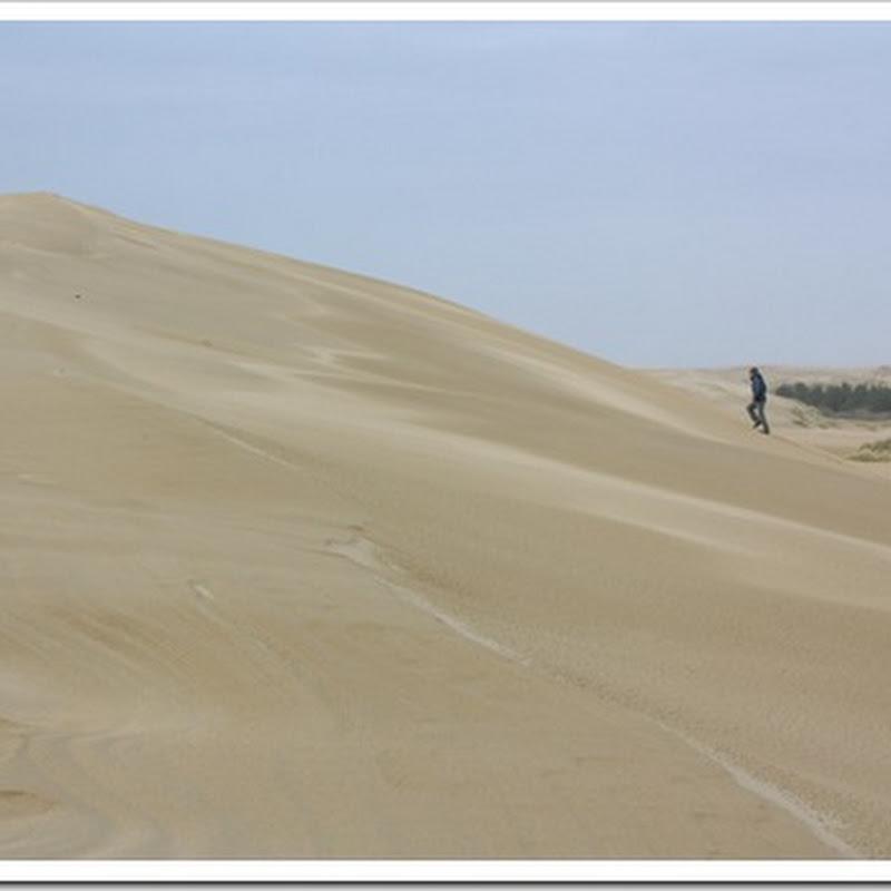 Road Trip: Sand Dunes