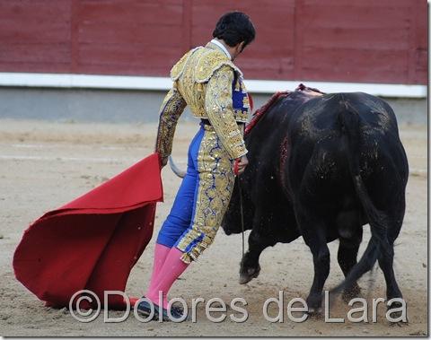 Juan Mora